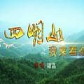 谭晶最新专辑《四明山我来看你(单曲)》封面图片