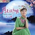 王二妮专辑 月是故乡明