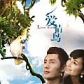 爱情鸟(单曲)