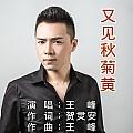 王峰最新专辑《又见秋菊黄》封面图片