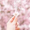 刘增瞳最新专辑《转角》封面图片