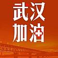 武汉加油,中国加油,战胜新型冠状病毒肺炎