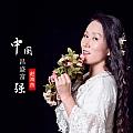 赵海燕专辑 中国昌盛富强