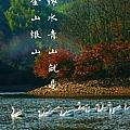 钟旭林新专辑《绿水青山就是金山银山》