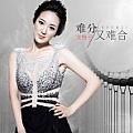 龙梅子最新专辑《难分又难合》封面图片