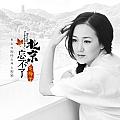 龙梅子最新专辑《北京・忘不了》封面图片