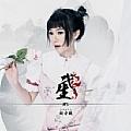 刘安琪最新专辑《武生》封面图片