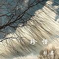张晨最新专辑《珍惜》封面图片