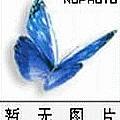 DJ舞曲专辑 DJ音乐选集 NO.3