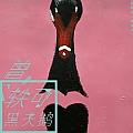 曾轶可最新专辑《黑天鹅》封面图片