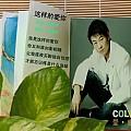 庞晓宇最新专辑《这样的爱你 EP》封面图片