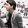 沙宝亮最新专辑《有种你爱我》封面图片