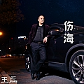 王磊专辑 伤海