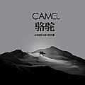 薛之谦最最新专辑《骆驼》封面图片